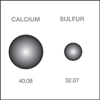 A representation of the relative size and mass of a calcium and sulfur atom