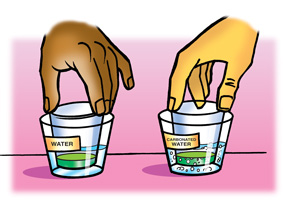Students place two small cups containing indicator solution into two wide-mouth cups, one containing water, and the other containing carbonated water.