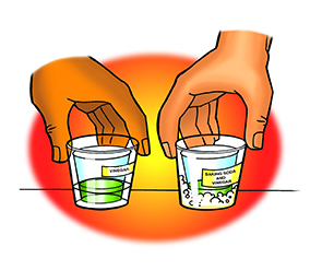 Students place two small cups containing indicator solution into two wide-mouth cups, one containing vinegar and baking soda, and the other containing nothing.