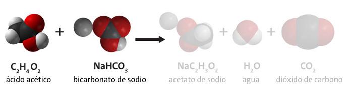 reaccion en bicarbonato y vinagre
