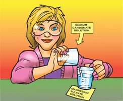 A teacher combines a sodium carbonate solution with a solution of magnesium sulfate