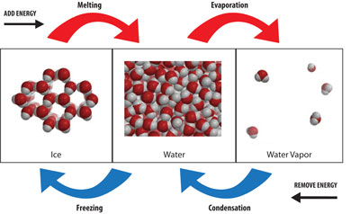 This diagram shows how water responds as energy is added or removed.  When energy is added to ice, it melts and becomes water. However, unlike many substances, the molecules in water are actually clos