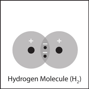 The hydrogen atoms form a covalent bond by sharing their electrons.