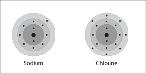 A sodium and a chlorine atom near each other.