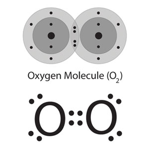Two depictions of an oxygen molecule. Above, energy level models show the sharing of two pairs of electrons between the atoms to illustrate the double covalent bond between them. Below, the lewis dot strucure of an oxygen molecule shows only those outermost electrons of each oxygen atom.
