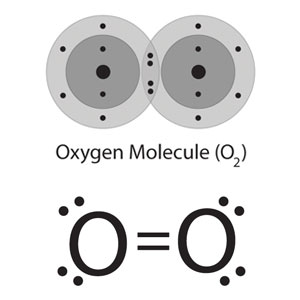 Two depictions of an oxygen atom. Above, energy level diagrams of each oxygen atom share electrons on the outermost energy level, although all electrons for each oxygen atom are shown. Below, a 'bond-line' shorthand representation of an oxygen atom, where the double covalent bond between the oxygen atoms is represented as a pair of straight lines.