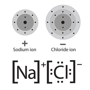 Two depictions of a sodium chloride formula unit. Above, using the familiar energy level models with a plus and minus to indicate that they are ions. Below, using lewis dot structures, where the chemical symbols are surrounded by the number of electrons in the charged species and accented by a superscript charge sign to show that they are ions.