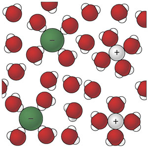 The ions that once composed the sodium chloride crystal are now totally solvated by water molecules and spread very far apart. No part of the original crystal is visible.