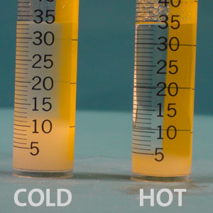 Sugar is dissolved in two graduated cylinders, one containing hot water and the other containing cold water. Far more sugar dissolves in the hot water than dissolves in the cold water.